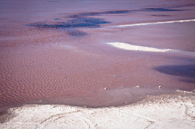 Punta Salinas salt flats, Sea of Cortez, Baja California, Mexico.