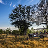 Safari vehicle, Moremi Game Reserve, Okavango Delta, Khwai River region, Botswana, Africa.