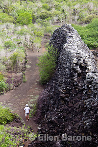 The Wall of Tears (Puerto Villamil), From 1945-1959, a penal colony hosted prisoners who were forced to build this wall, stone by stone, in isolation on Isla Isabela, Galapagos Islands, Ecuador.
