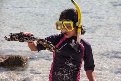 Specialty Kids in Nature voyages are offered for families traveling with children 12 and younger, Safari Endeavour, Sea of Cortés, Baja California Sur, Mexico.