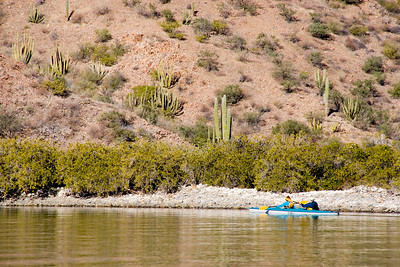 Sea kayaking along the shoreline of Isla del Carmen, Sea of Cortez, Baja California Sur, Mexico.