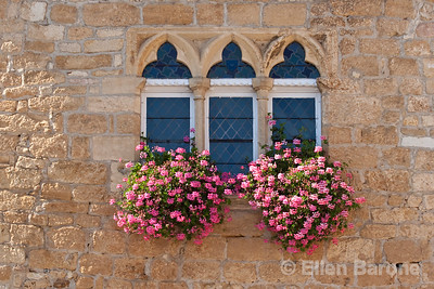 Window and flower boxes, Domme, France