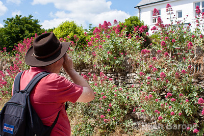Photographing Devon farmhouse and flowers, England, U.K.