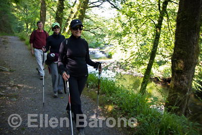 Wayfarers' hiking along the thickly wooded banks of the River Dart, Devon, England, U.K.