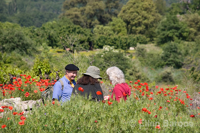 Wayfarers walkers in vineyard near Lacoste  the Luberon, Provence, France, Europe