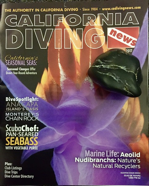 """Cover of """"California Diving News"""" with nudibranch photo by Kevin Lee. Also shown is a fist-sized jade stone he found while scuba diving at Jade Cove, north of San Simeon, California."""
