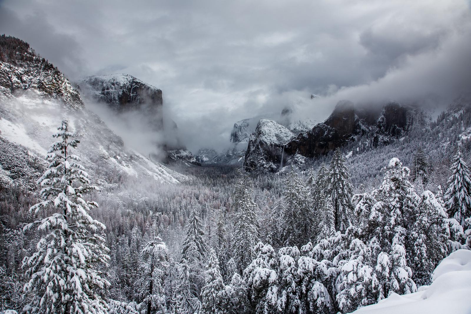 Family_012117_Yosemite_6082