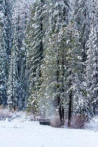 Family_012117_Yosemite_7716