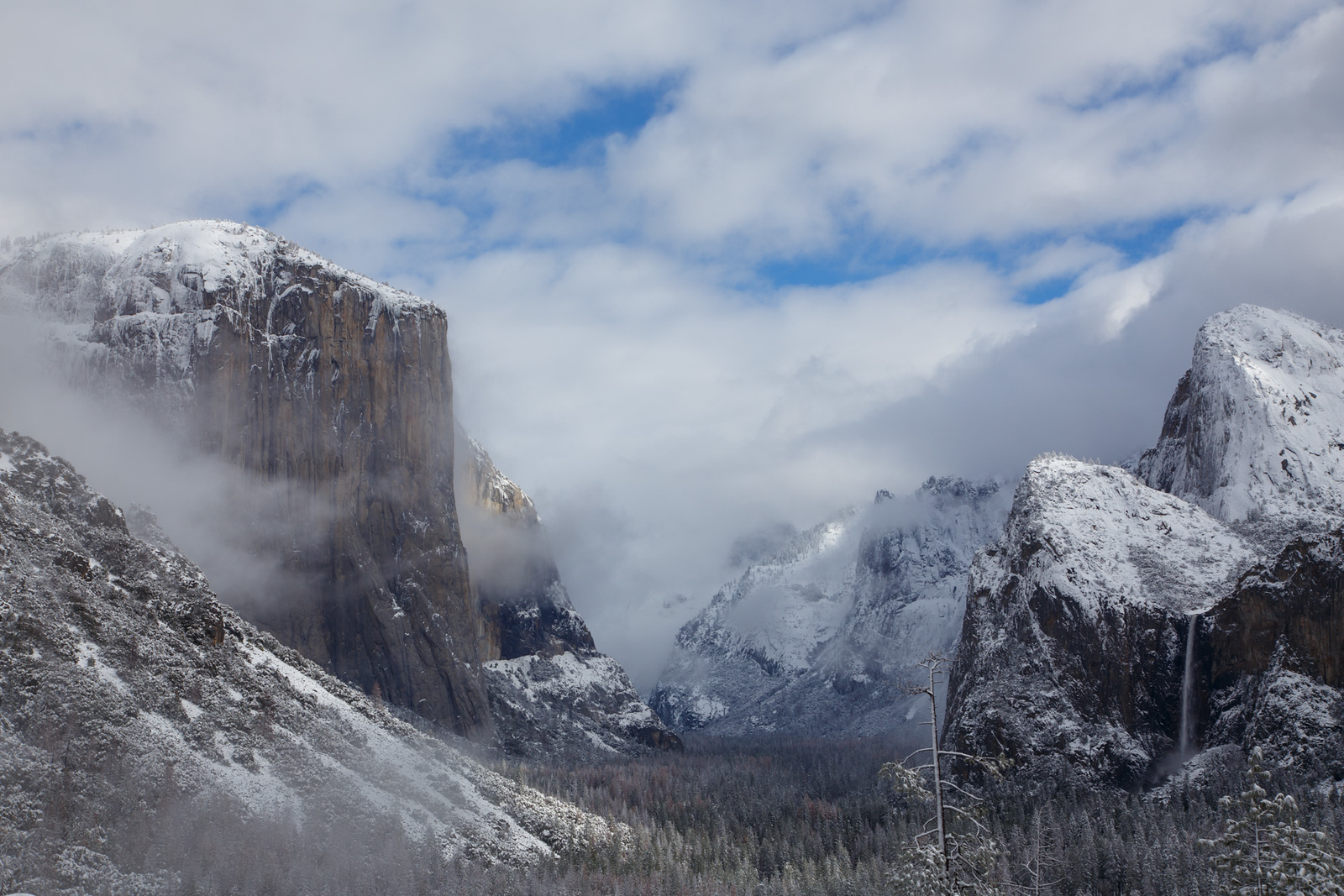 Family_012117_Yosemite_6139