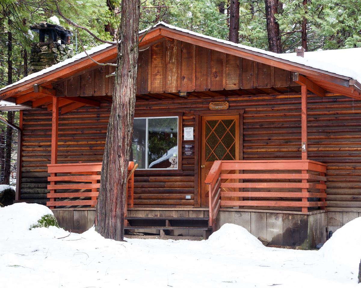 Family_012117_Yosemite_6198
