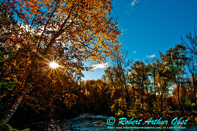 View from a canoe of gorgeous autumn colors along the wild and scenic Wolf River Section 2 near the Wolf River Refuge (USA WI White Lake)