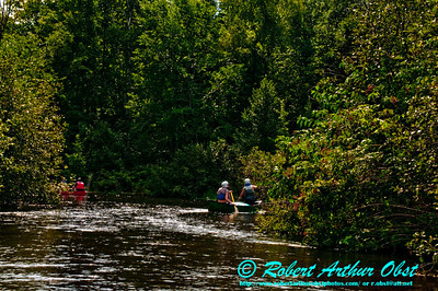 Sun rippled riffels delight canoeists on the Wild Scenic Wolf River (USA WI White Lake)