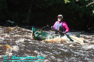 Concentration and chaos for hundreds of canoe and kayak competitors during the 2014 Wolfman Triathlon in Sherry Rapids  at 912 cubic feet per second (8.91 FT on the Langlade USGS Gauge) on Section 2 of the wild Wolf River (USA WI Langlade; Obst Photos Nikon D800 and Nikon D300 Adventures in Paddlesport Competition WolfmanTriathlon Images)