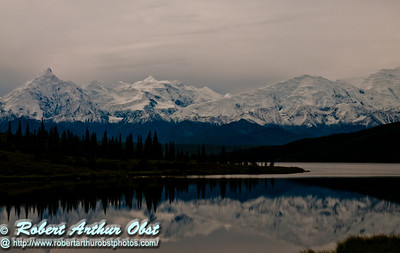 Reflections of snowy Denali or Mount McKinley and its forests in Wonder Lake within Denali National Park (USA Alaska Denali Park)
