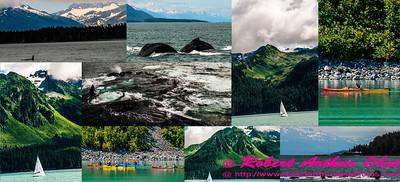 Obst Photos Nikon D300s Obst Adventure Travel Alaska Image 7634
