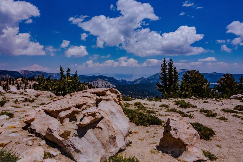 Cottonwood Pass, elevation 11160
