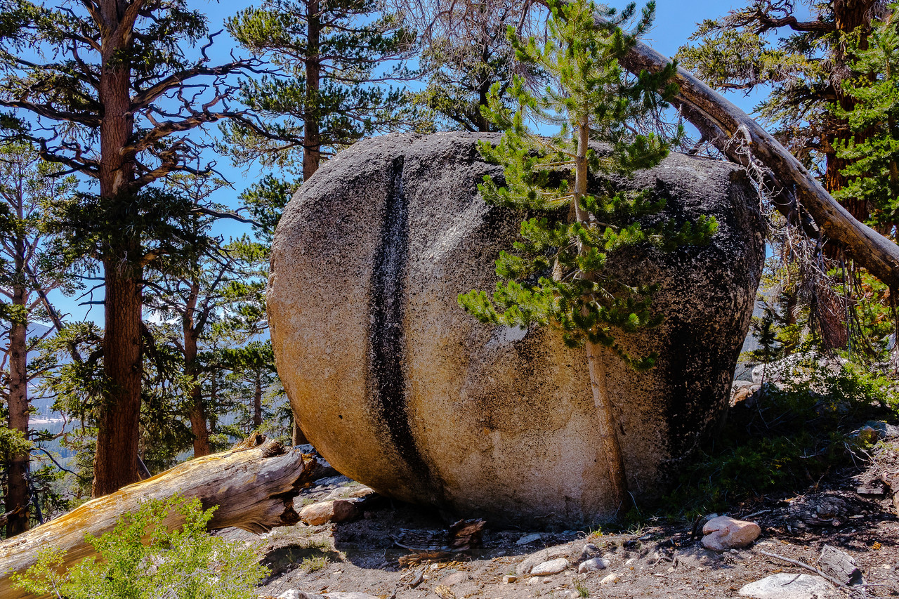 Big Butt Rock on the way to Big Whitney Meadow