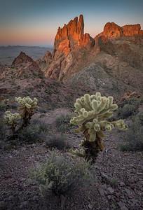 Kofa National Wildlife Refuge, Arizona. Copyright © 2020 All rights reserved.