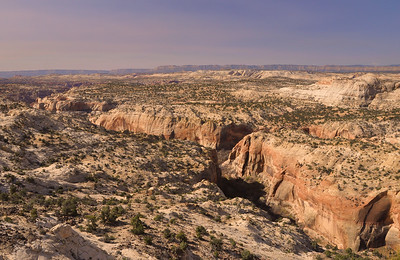 Calf Creek Canyon From Above  Escalante, Utah.  Copyright © 2011 All rights reserved.