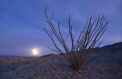 Coachwhip Canyon Moonset