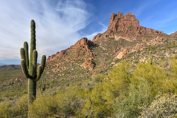 Miner's Needle Along the Dutchman Trail