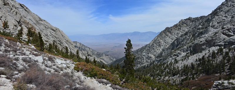 A look back down the canyon Inyo National Forest, California.  Copyright © 2013 All rights reserved.