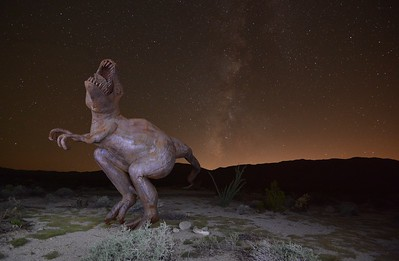 The 1st Dancing with the Stars......... Borrego Springs, California. Copyright © 2013 All rights reserved.