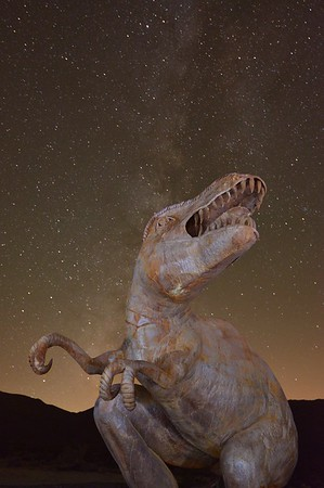 Dinosaur Borrego Springs, California. Copyright © 2013 All rights reserved.