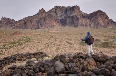 Signal Peak and Palm Canyon