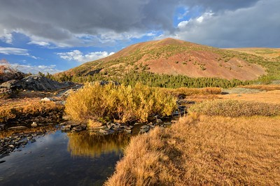 Fall Color and the Tioga Crest