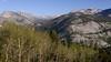 Bear Creek Canyon From Bear Ridge