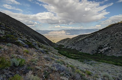 Owens Valley From Red Lake Canyon