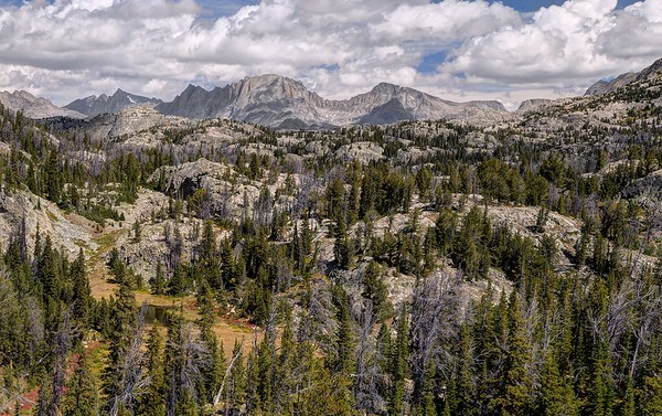 Bridger-Teton National Forest, Wyoming. Copyright © 2016 All rights reserved.