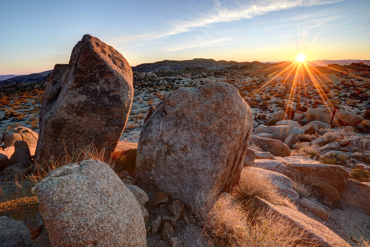 Joshua Tree National Park, California.<br /> Copyright © 2016<br /> All rights reserved.