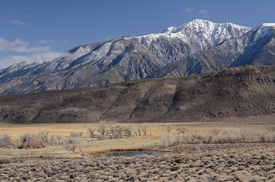 Tallest Mountain in the State of Nevada (Boundary Peak 13,140')