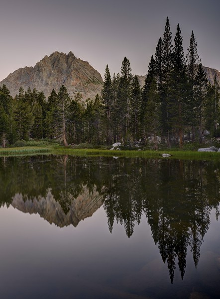 Two Eagle Peak and Trees at Dawn