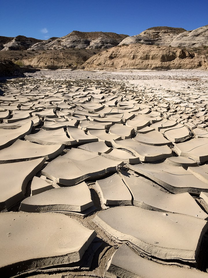 Cracked Soil in Wahweap Wash