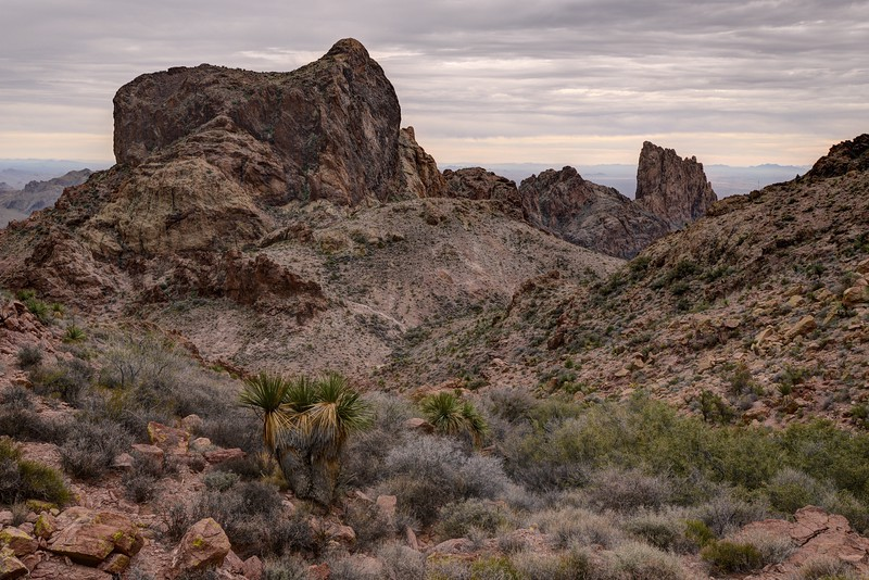 Kofa National Wildlife Refuge, Arizona. Copyright © 2017 All rights reserved.
