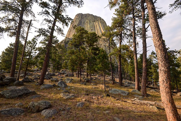 Southeast Side of Devils Tower