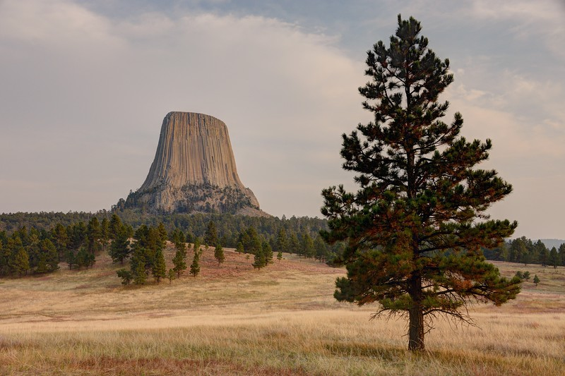 Devils Tower From Joyner Ridge
