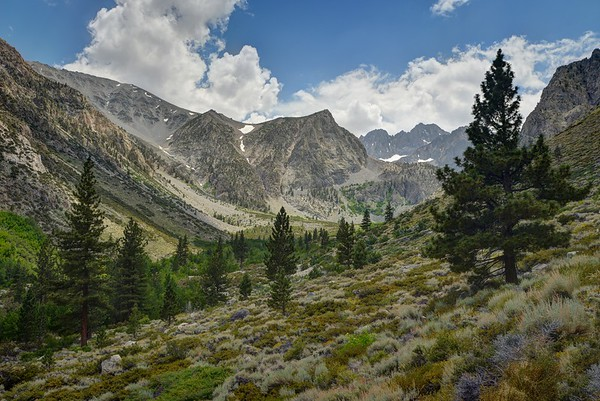 South Fork of Big Pine Creek Looking Toward Middle Palisade