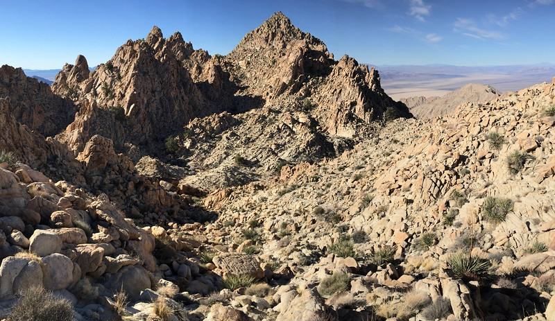 Spectre Peak and the Joshua Tree Expanse Beyond