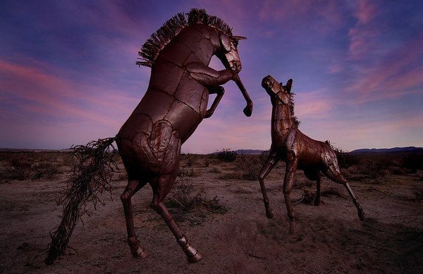 Borrego Springs Metal Sculptures Borrego Springs, California.  Copyright © 2009 All rights reserved.