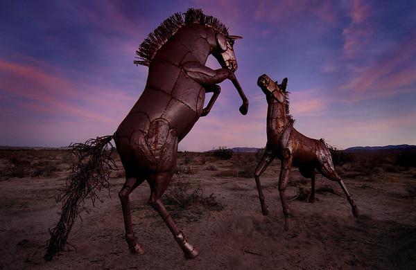 Borrego Springs Metal Sculptures Borrego Springs, California.  Copyright © 2009 All rights reserved.