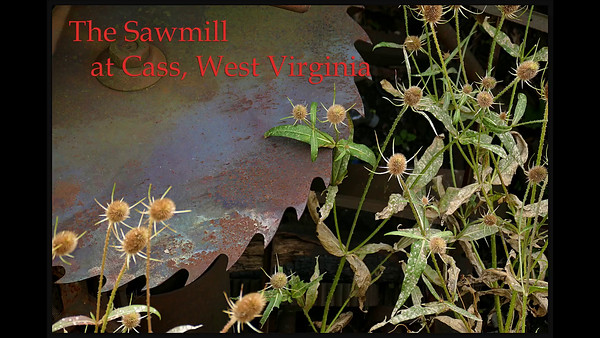 The Sawmill at Cass, West Virginia