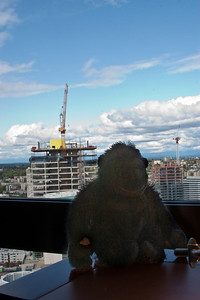 I wonder if they would let me climb up the side of that building like king kong?