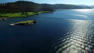5-Golfers on the floating green