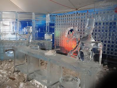 1-25-15 Ice 019