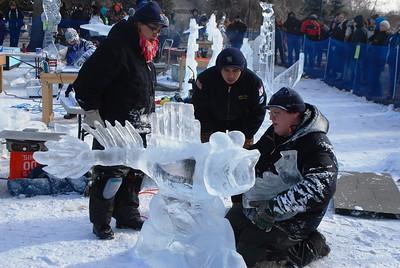 1-25-15 Ice 051