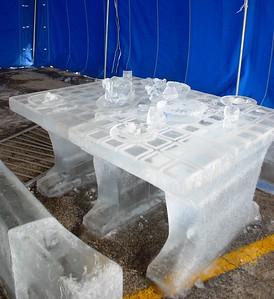 1-25-15 Ice 021
